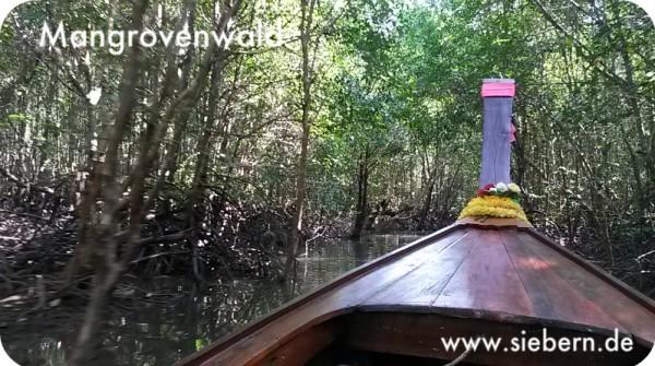Mangrovenwald Krabi